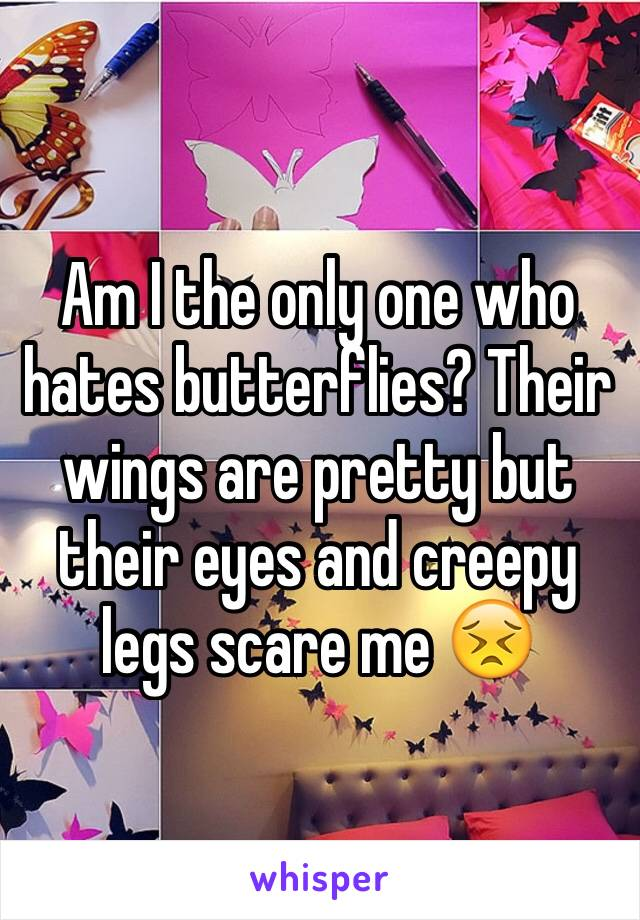 Am I the only one who hates butterflies? Their wings are pretty but their eyes and creepy legs scare me 😣