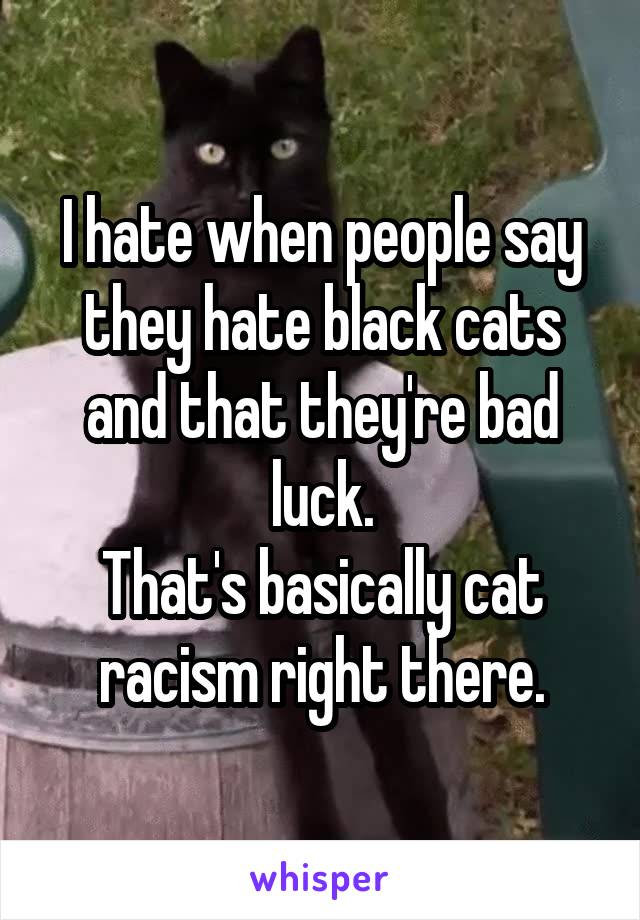 I hate when people say they hate black cats and that they're bad luck. That's basically cat racism right there.