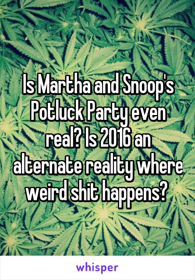 Is Martha and Snoop's Potluck Party even real? Is 2016 an alternate reality where weird shit happens?