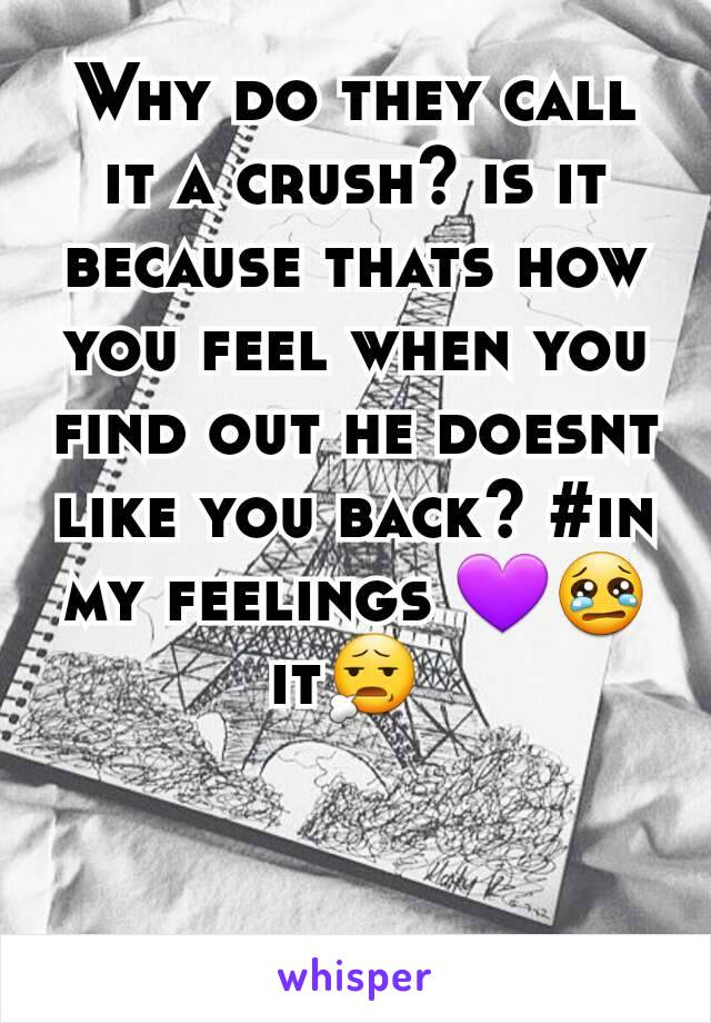 Why do they call it a crush? is it because thats how you feel when you find out he doesnt like you back? #in my feelings 💜😢it😧