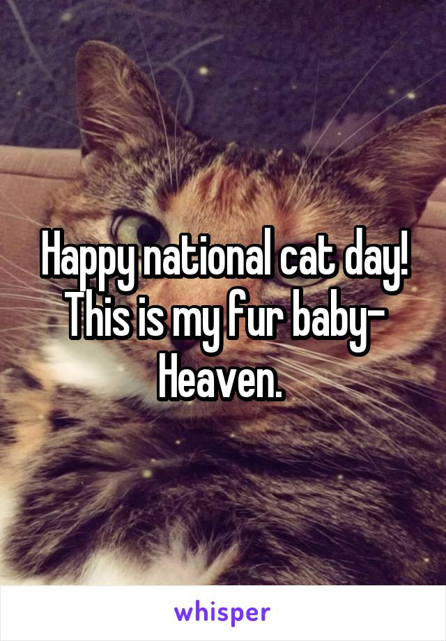 Happy national cat day! This is my fur baby- Heaven.