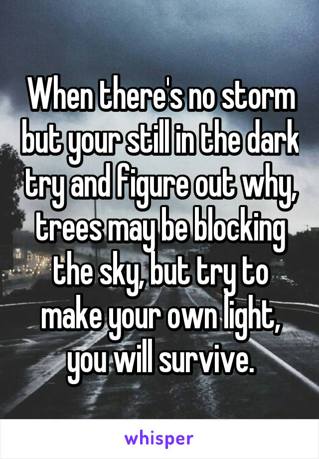 When there's no storm but your still in the dark try and figure out why, trees may be blocking the sky, but try to make your own light, you will survive.