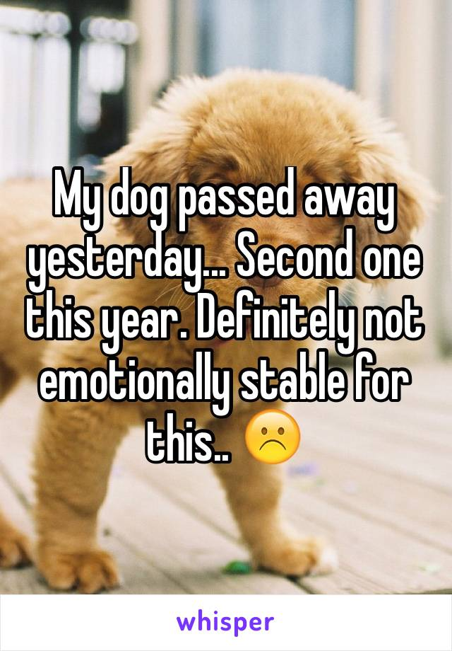 My dog passed away yesterday... Second one this year. Definitely not emotionally stable for this.. ☹️