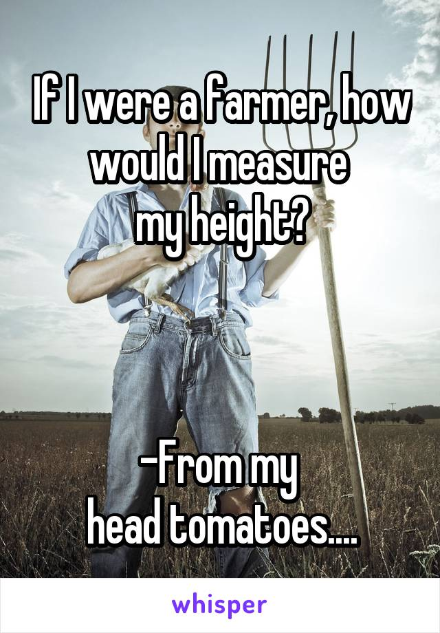 If I were a farmer, how would I measure  my height?    -From my  head tomatoes....
