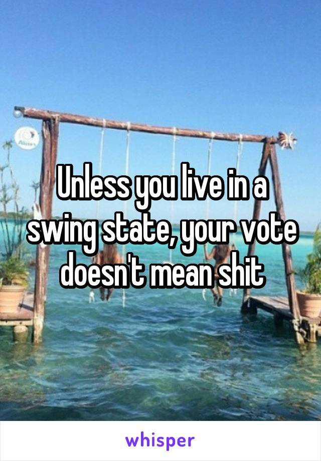 Unless you live in a swing state, your vote doesn't mean shit