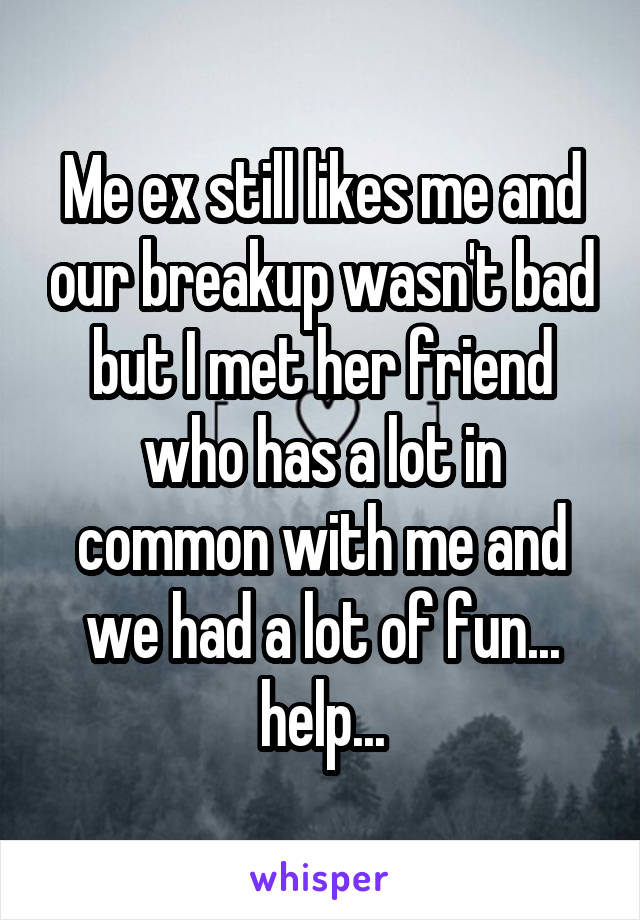 Me ex still likes me and our breakup wasn't bad but I met her friend who has a lot in common with me and we had a lot of fun... help...