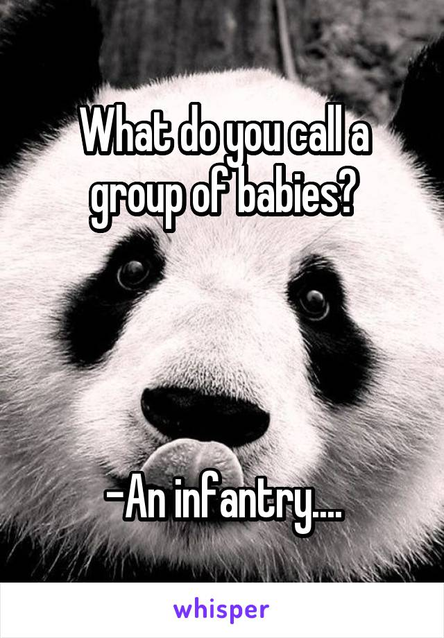 What do you call a group of babies?     -An infantry....