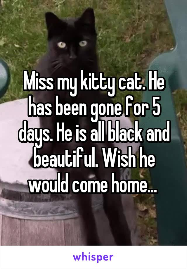 Miss my kitty cat. He has been gone for 5 days. He is all black and beautiful. Wish he would come home...