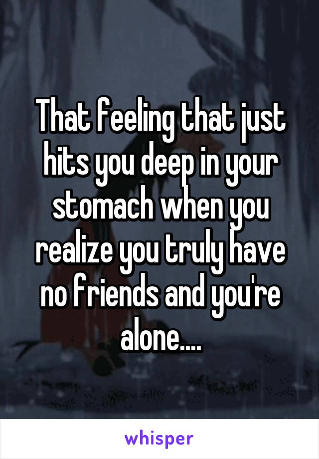 That feeling that just hits you deep in your stomach when you realize you truly have no friends and you're alone....