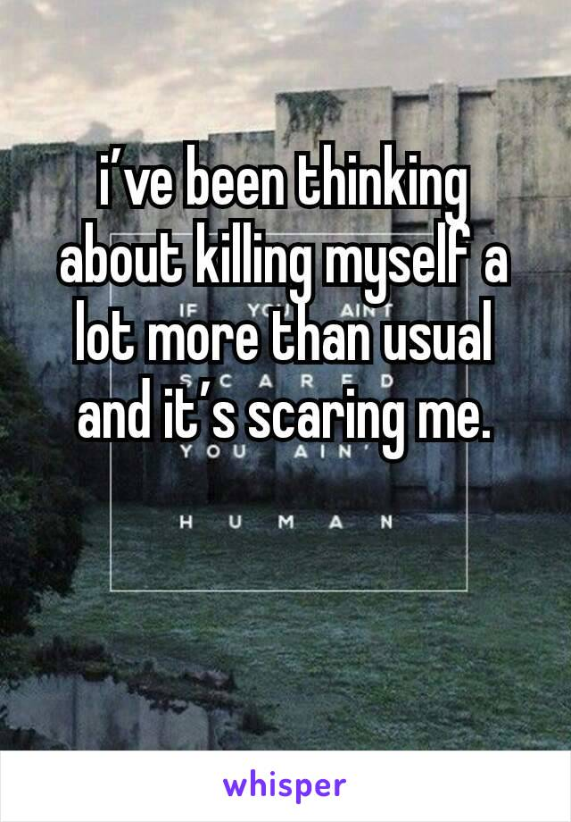 i've been thinking about killing myself a lot more than usual and it's scaring me.