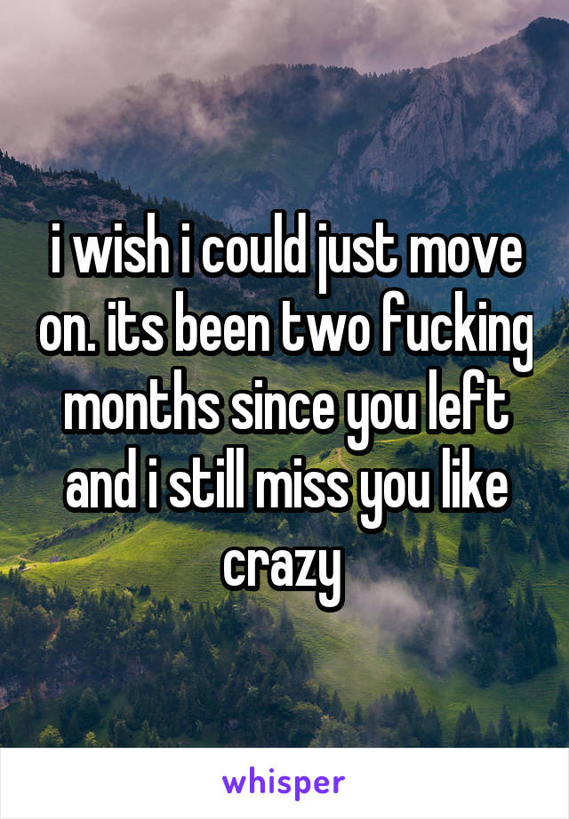 i wish i could just move on. its been two fucking months since you left and i still miss you like crazy