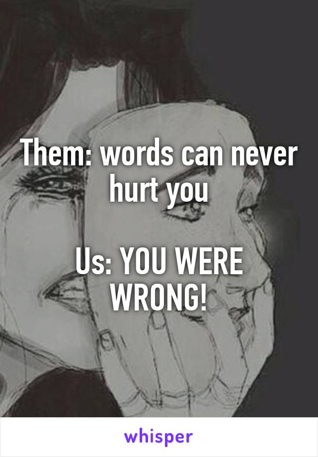 Them: words can never hurt you  Us: YOU WERE WRONG!