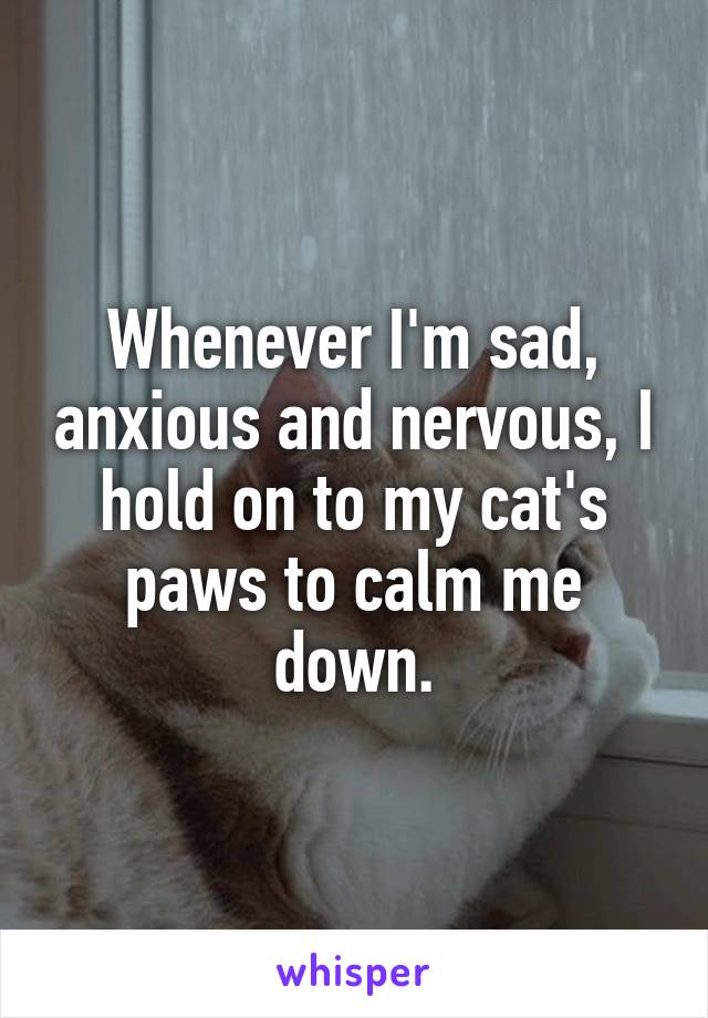 Whenever I'm sad, anxious and nervous, I hold on to my cat's paws to calm me down.