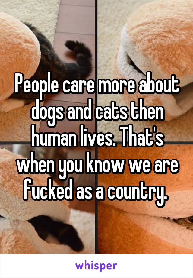 People care more about dogs and cats then human lives. That's when you know we are fucked as a country.