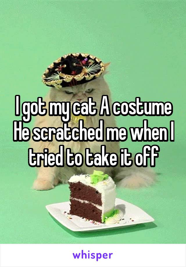 I got my cat A costume He scratched me when I tried to take it off
