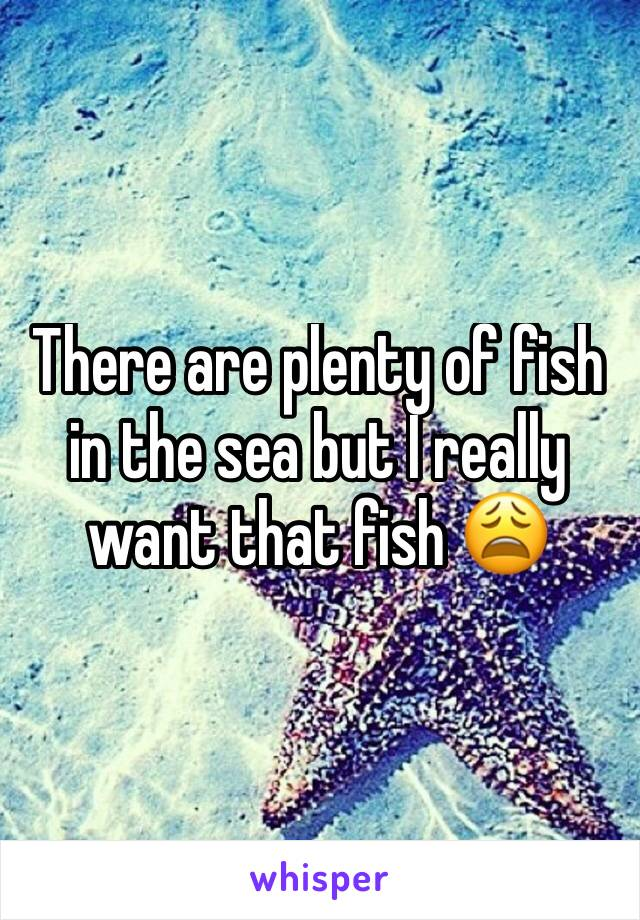 There are plenty of fish in the sea but I really want that fish 😩