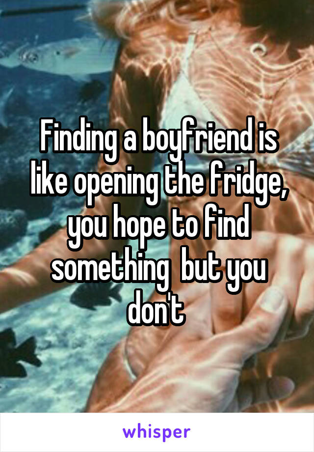 Finding a boyfriend is like opening the fridge, you hope to find something  but you don't