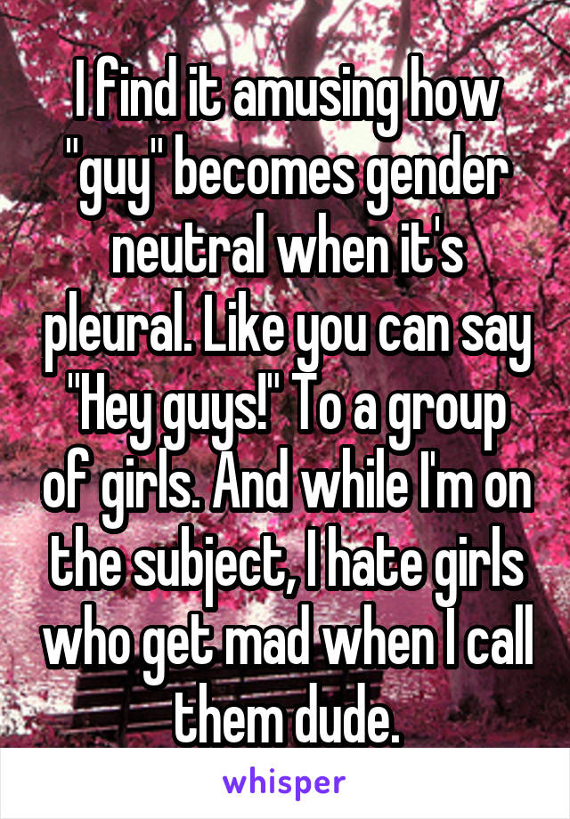 "I find it amusing how ""guy"" becomes gender neutral when it's pleural. Like you can say ""Hey guys!"" To a group of girls. And while I'm on the subject, I hate girls who get mad when I call them dude."