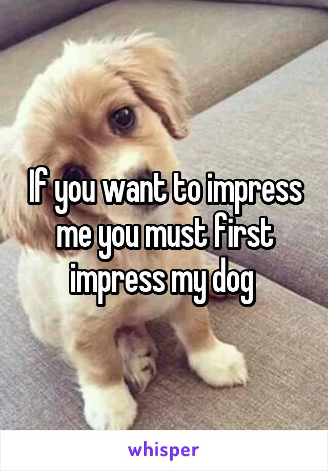 If you want to impress me you must first impress my dog