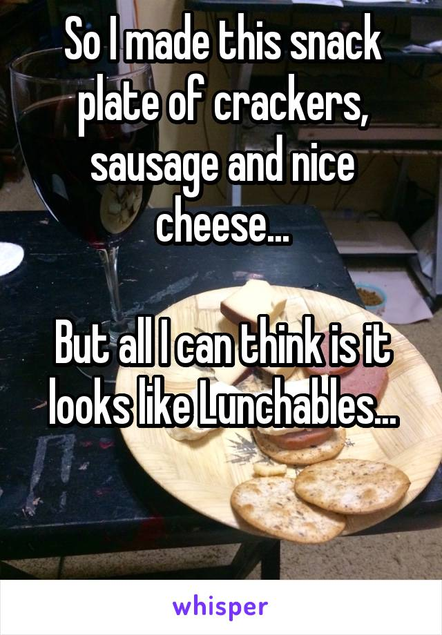 So I made this snack plate of crackers, sausage and nice cheese...  But all I can think is it looks like Lunchables...