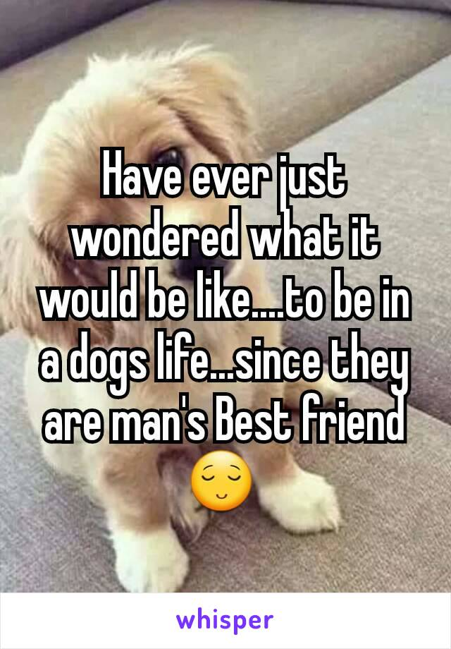 Have ever just wondered what it would be like....to be in a dogs life...since they are man's Best friend😌