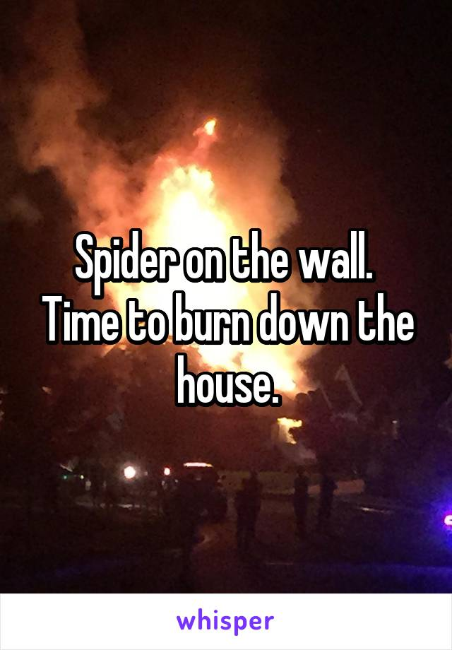 Spider on the wall.  Time to burn down the house.