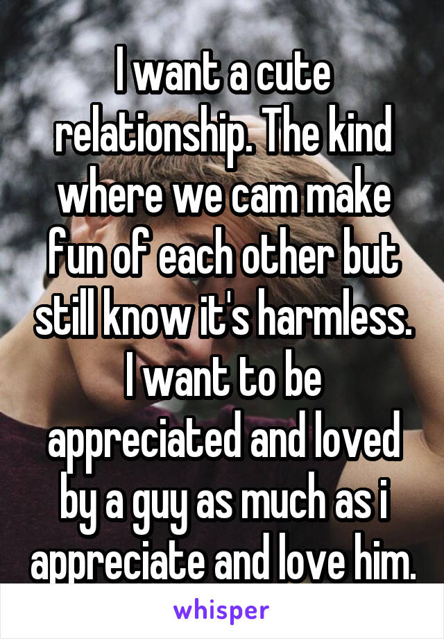 I want a cute relationship. The kind where we cam make fun of each other but still know it's harmless. I want to be appreciated and loved by a guy as much as i appreciate and love him.