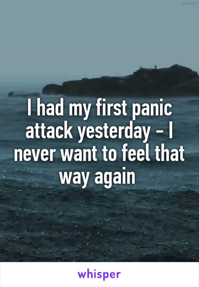 I had my first panic attack yesterday - I never want to feel that way again