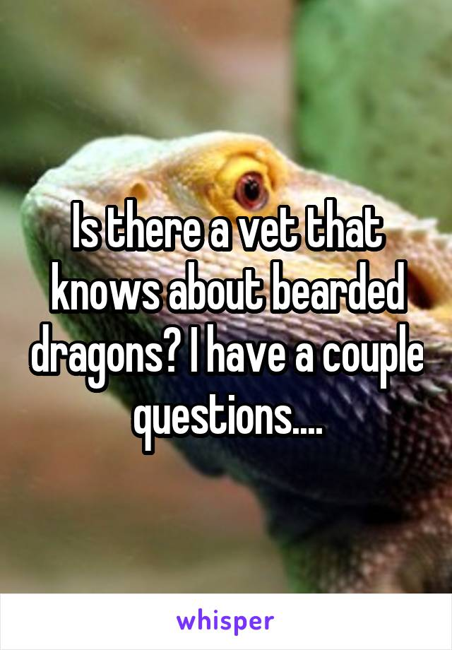 Is there a vet that knows about bearded dragons? I have a couple questions....