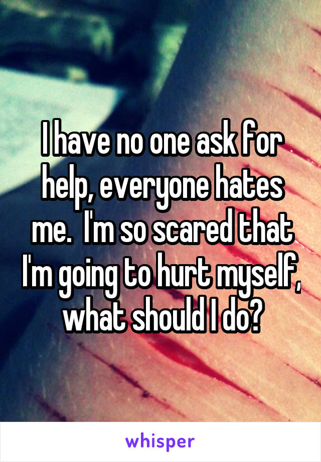 I have no one ask for help, everyone hates me.  I'm so scared that I'm going to hurt myself, what should I do?