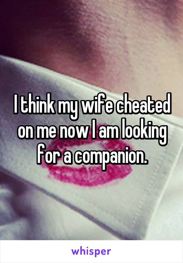I think my wife cheated on me now I am looking for a companion.