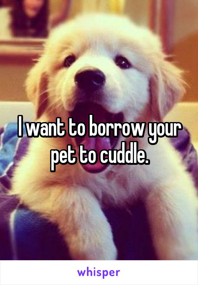 I want to borrow your pet to cuddle.