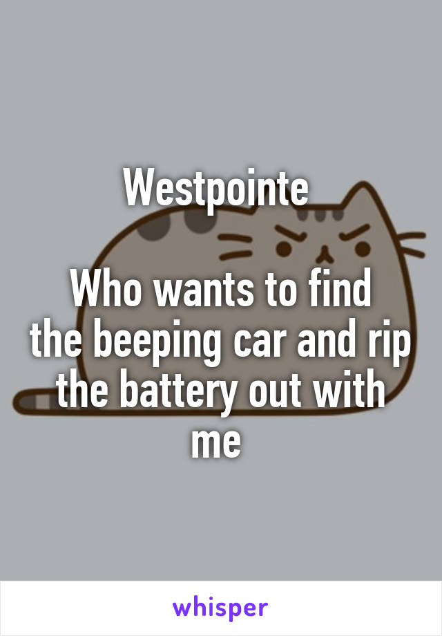 Westpointe   Who wants to find the beeping car and rip the battery out with me