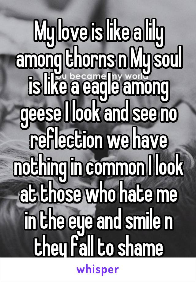 My love is like a lily among thorns n My soul is like a eagle among geese I look and see no reflection we have nothing in common I look at those who hate me in the eye and smile n they fall to shame