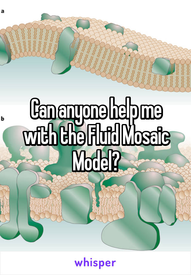 Can anyone help me with the Fluid Mosaic Model?