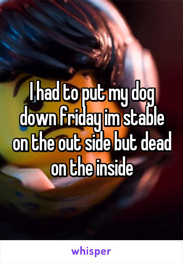 I had to put my dog down friday im stable on the out side but dead on the inside