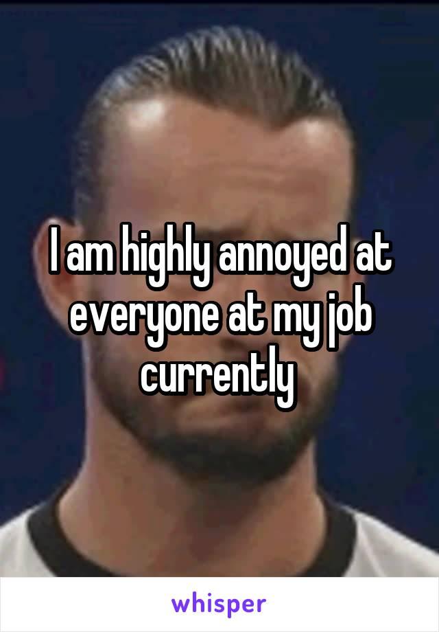 I am highly annoyed at everyone at my job currently