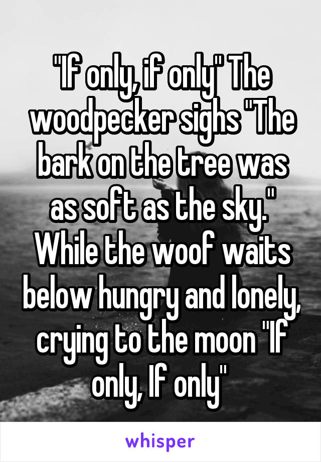 """If only, if only"" The woodpecker sighs ""The bark on the tree was as soft as the sky."" While the woof waits below hungry and lonely, crying to the moon ""If only, If only"""