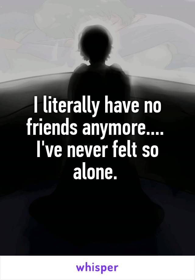 I literally have no friends anymore....  I've never felt so alone.