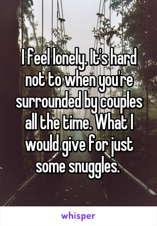 I feel lonely. It's hard not to when you're surrounded by couples all the time. What I would give for just some snuggles.
