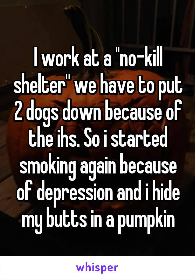 "I work at a ""no-kill shelter"" we have to put 2 dogs down because of the ihs. So i started smoking again because of depression and i hide my butts in a pumpkin"