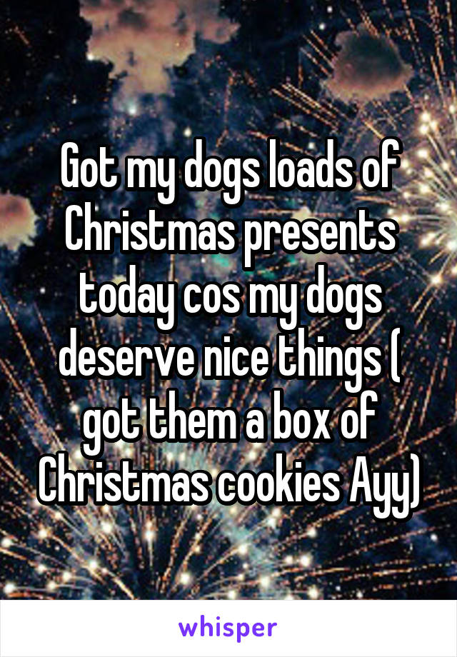 Got my dogs loads of Christmas presents today cos my dogs deserve nice things ( got them a box of Christmas cookies Ayy)