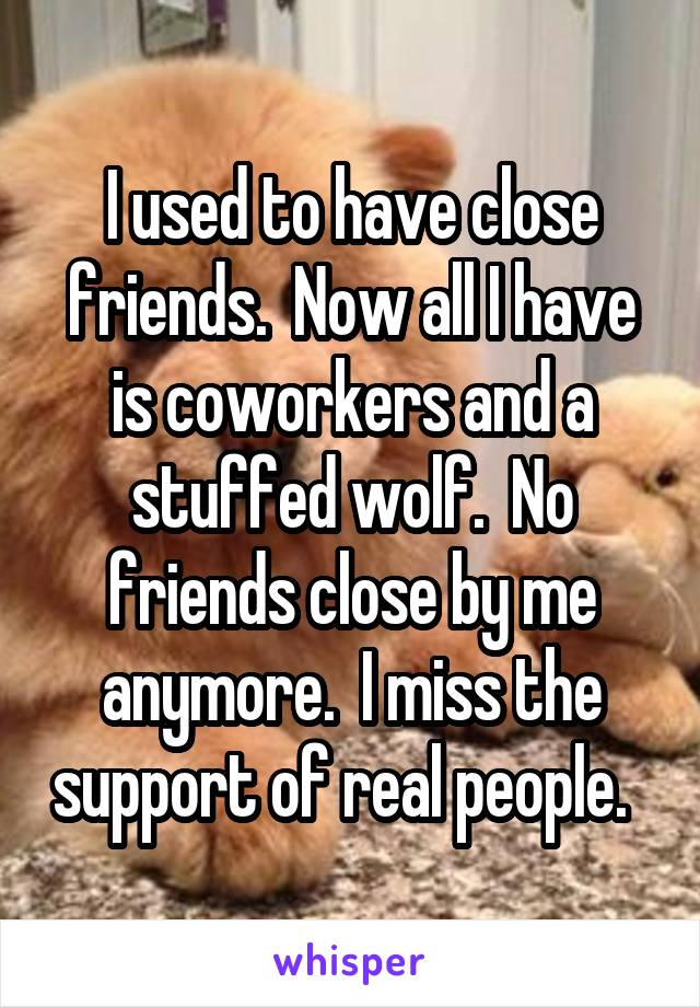 I used to have close friends.  Now all I have is coworkers and a stuffed wolf.  No friends close by me anymore.  I miss the support of real people.