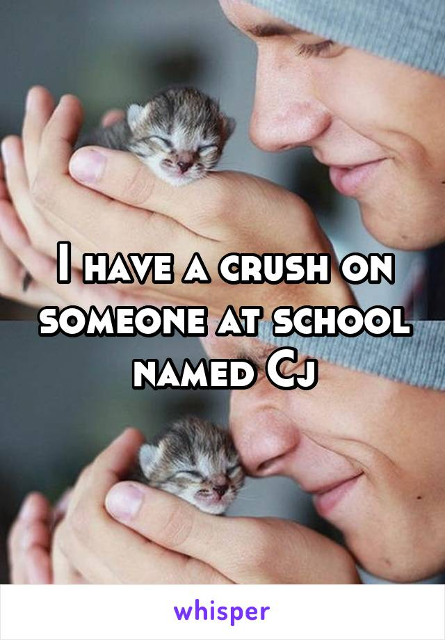 I have a crush on someone at school named Cj