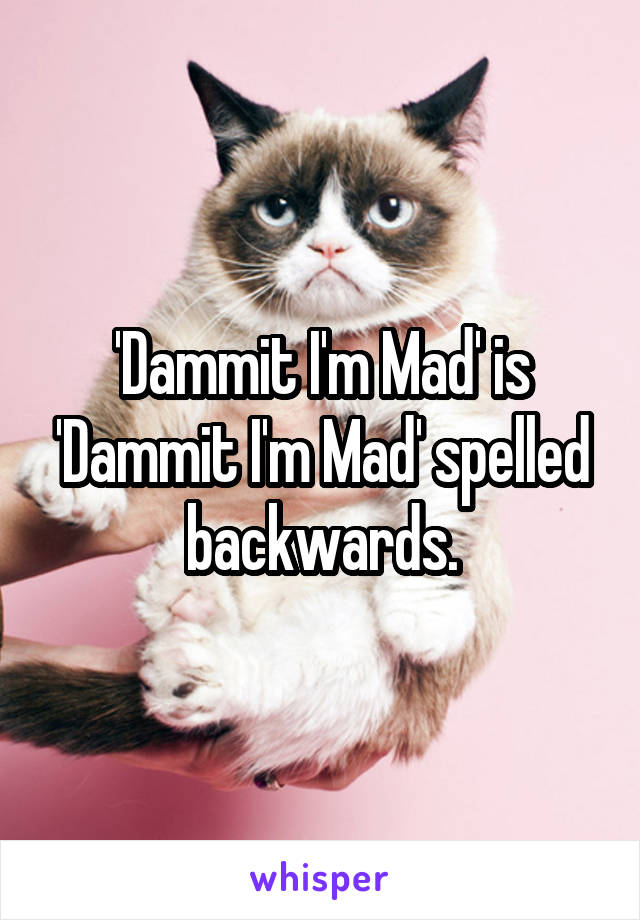 'Dammit I'm Mad' is 'Dammit I'm Mad' spelled backwards.