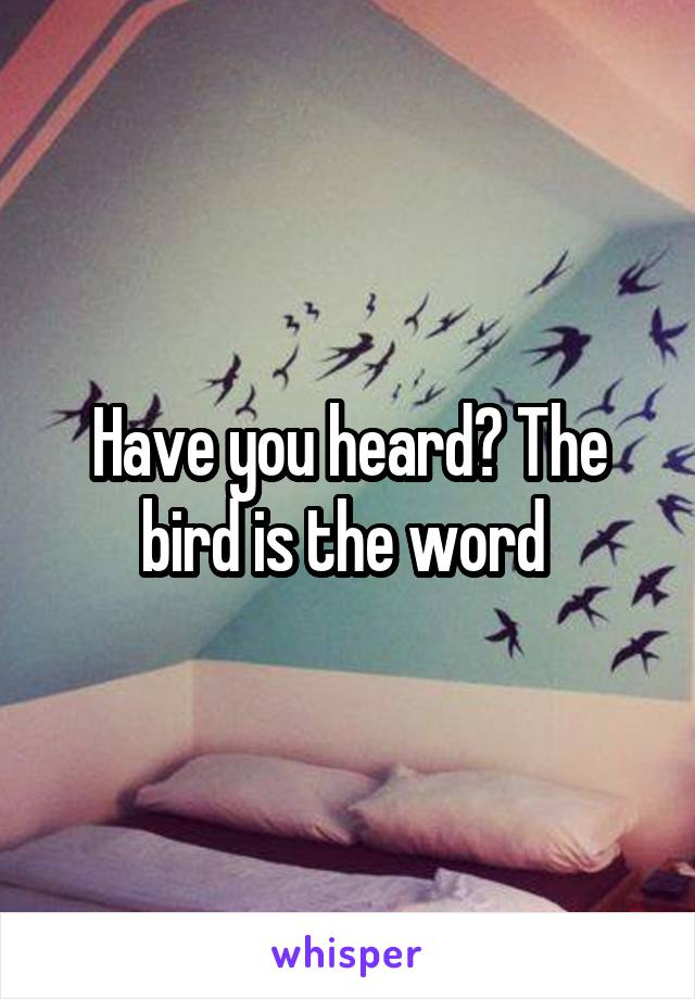 Have you heard? The bird is the word