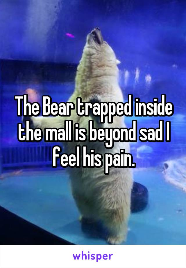 The Bear trapped inside the mall is beyond sad I feel his pain.