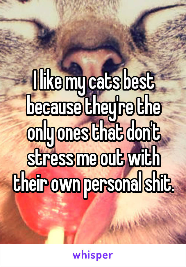 I like my cats best because they're the only ones that don't stress me out with their own personal shit.