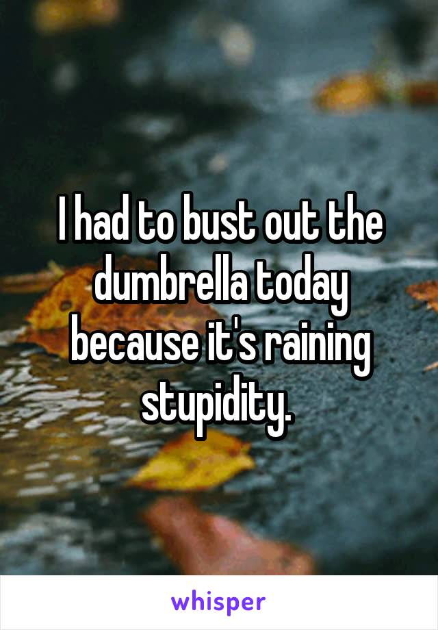 I had to bust out the dumbrella today because it's raining stupidity.