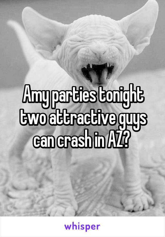 Amy parties tonight two attractive guys can crash in AZ?